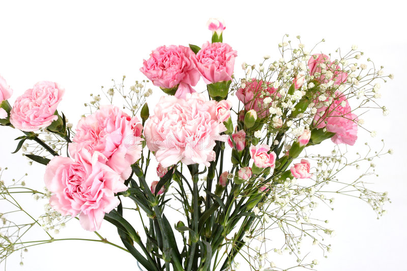 Blumenstrauß der Gartennelken lizenzfreie stockbilder