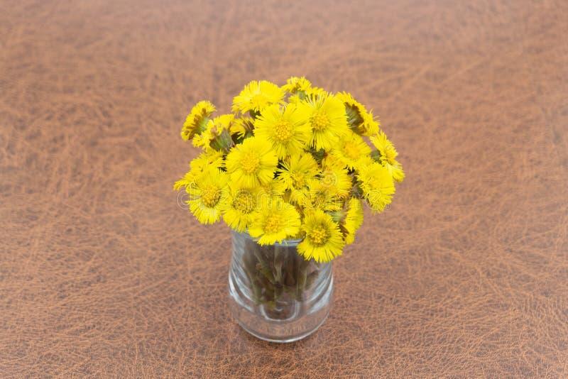 Blumenstrauß der gelben Blumenmutter des Frühlinges einer Stiefmutter in einem Vase auf einem grünen Hintergrund lizenzfreie stockfotografie