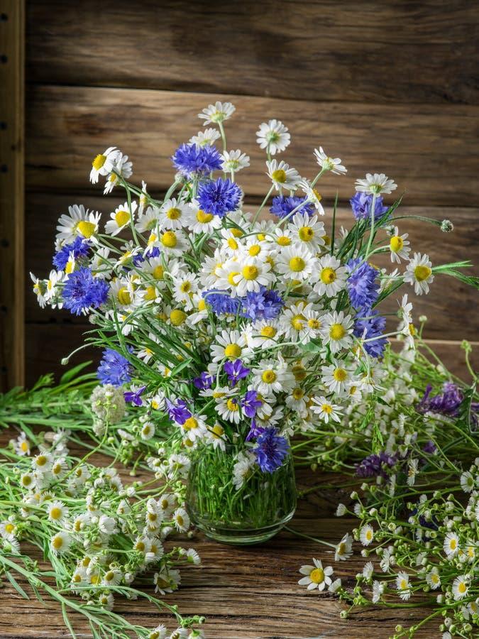 Blumenstrauß der Kamille und der Kornblumen lizenzfreies stockbild