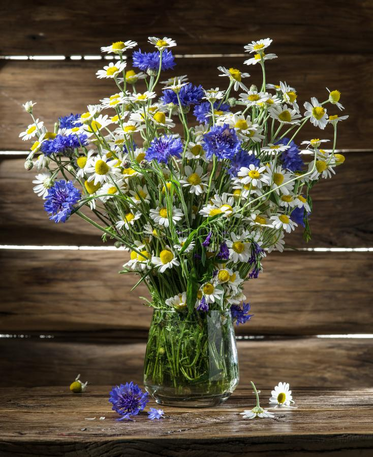 Blumenstrauß der Kamille und der Kornblumen stockfotografie