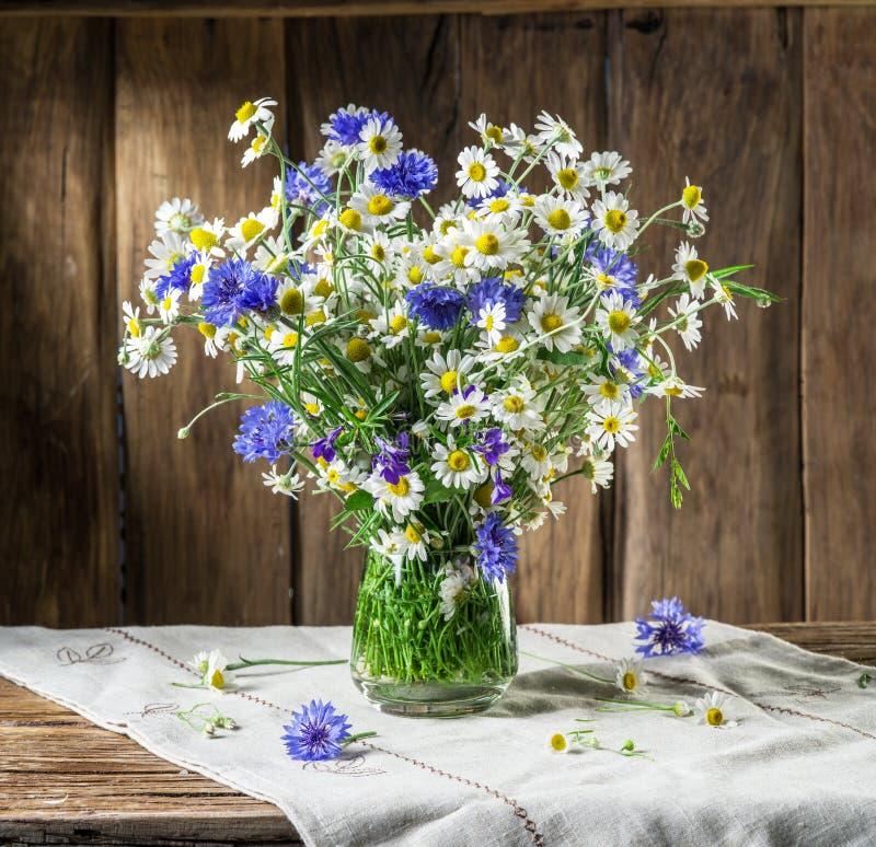Blumenstrauß der Kamille und der Kornblumen im Vase lizenzfreie stockbilder