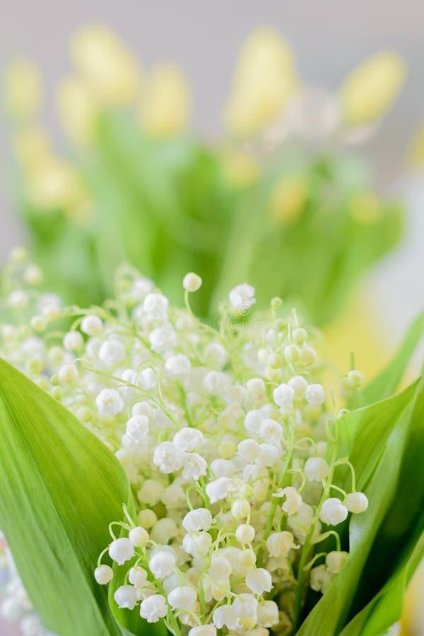Blumenstrauß der Lilie der Talblumen stockbild