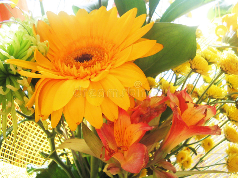 Blumenstrauß der orange Blumen stockbilder