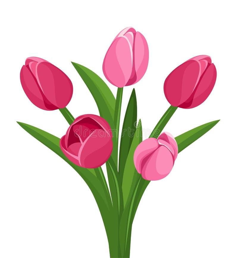 Blumenstrauß der rosa Tulpen. vektor abbildung