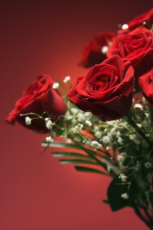 Blumenstrauß der roten Rosen. lizenzfreie stockbilder