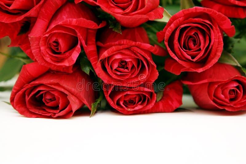 Blumenstrauß der roten Rosen lizenzfreies stockfoto