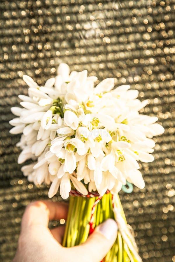 Blumenstrauß der Schneetropfen stockbilder