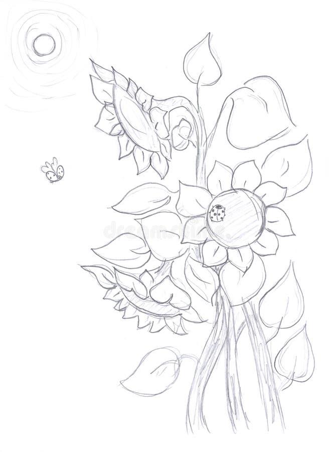 Blumenstrauß der Sonnenblumen, Skizze stock abbildung