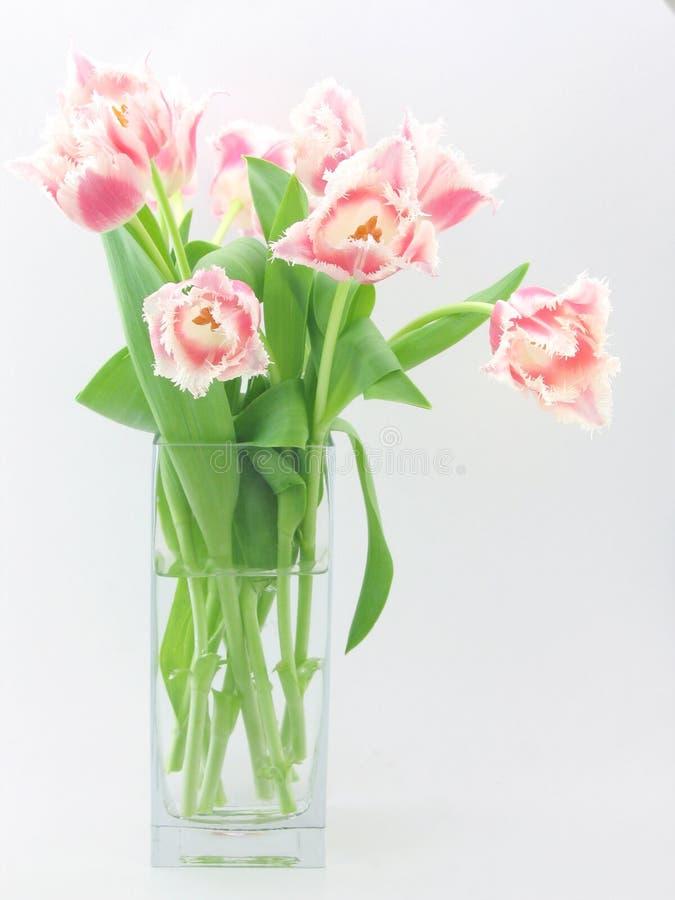 Blumenstrauß der Tulpen stockfoto