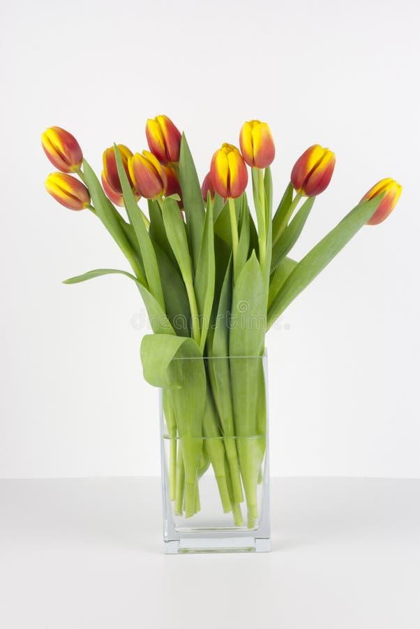 Blumenstrauß der Tulpen in einem Glasvase stockbild