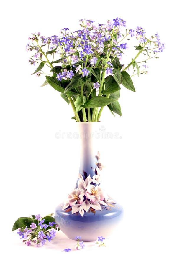 Blumenstrauß der Vergissmeinnichte stockfotografie