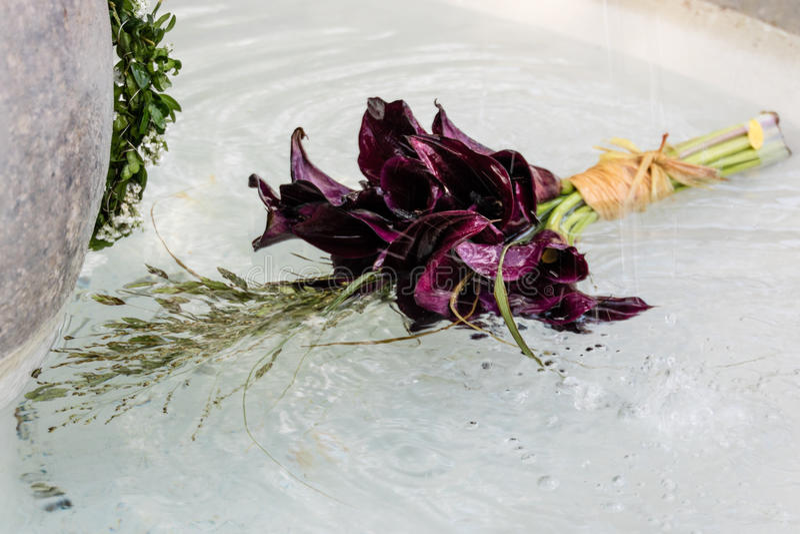 Blumenstrauß, der in Wasser schwimmt stockfotos