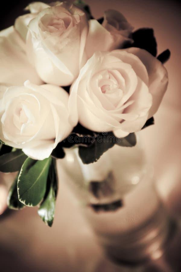 Blumenstrauß der weißen Rosen stockfotografie