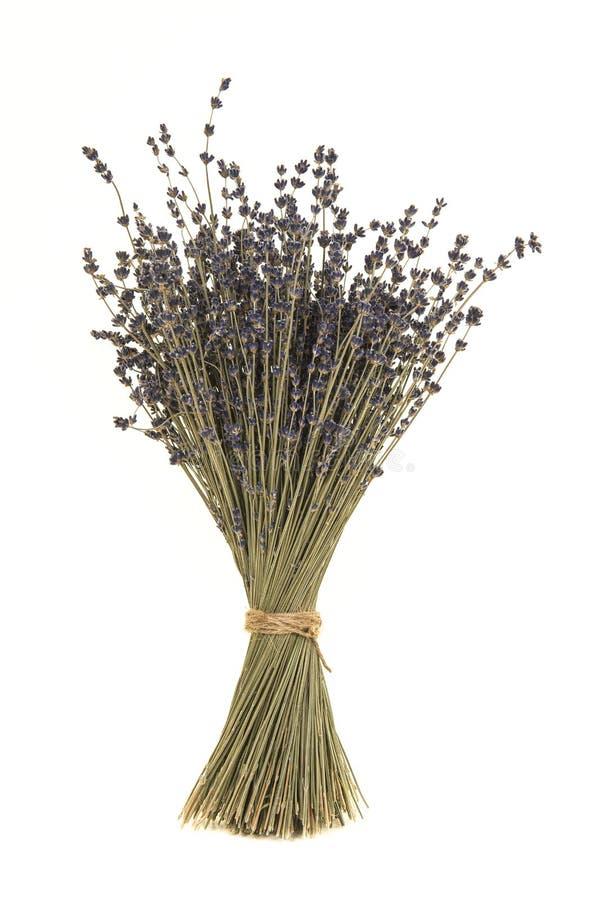 Blumenstrauß des getrockneten Lavendels lizenzfreies stockfoto