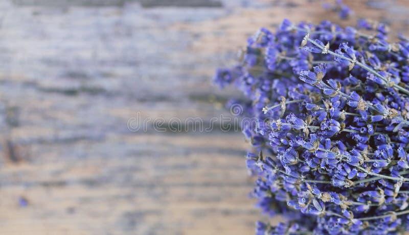 Blumenstrauß des getrockneten Lavendels auf einem alten gemalten hölzernen Hintergrundabschluß oben lizenzfreie stockbilder