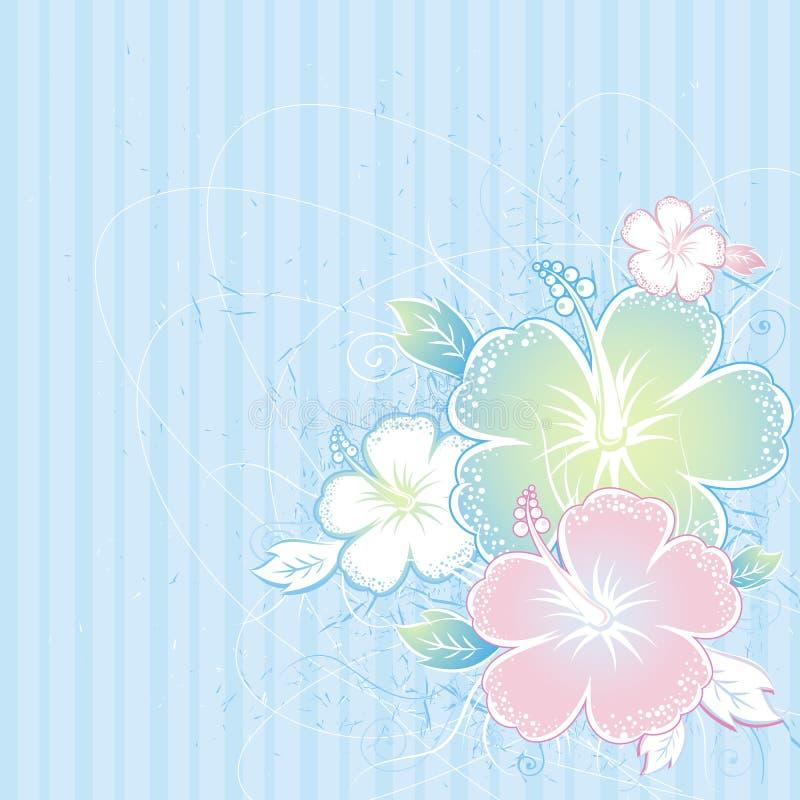 Blumenstrauß des Hibiscus, Vektor stock abbildung