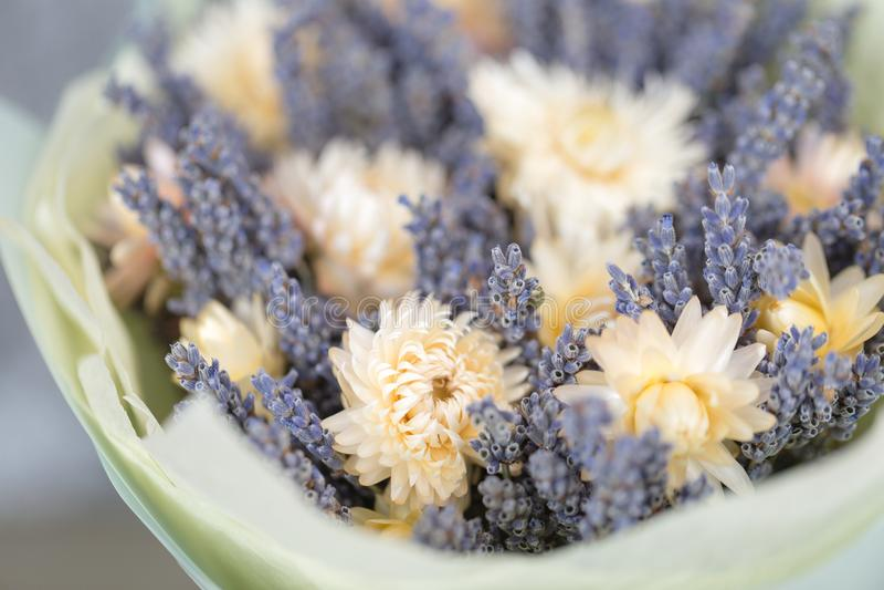 Blumenstrauß des Lavendels und der trockenen Blumen Buntes Sommerbündel des purpurroten Lavendels und der gelben Kamille blüht stockbilder