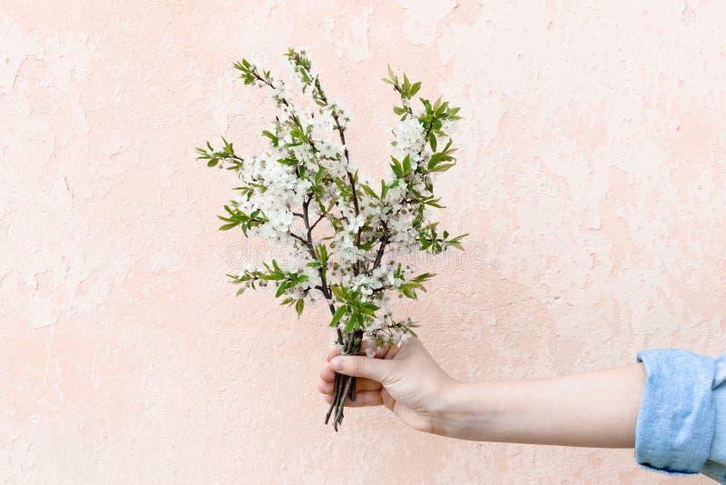 Blumenstrauß des Mädchengriffs in der Hand von Apfelniederlassungen stockfoto