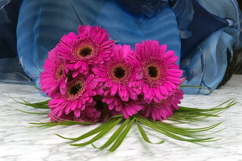 Blumenstrauß des purpurroten gerber mit einem blauen Hintergrund auf der Marmortabelle lizenzfreies stockbild