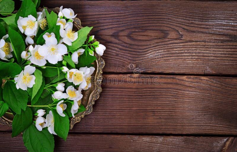 Blumenstrauß des weißen blühenden Jasmins auf einem dicken Kupferblech stockfoto