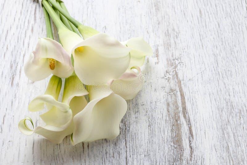 Blumenstrauß des weißen Calla blüht (Zantedeschia) auf weißem hölzernem ta lizenzfreie stockfotos