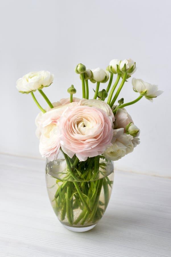 Blumenstrauß des weißen Ranunculus im Glasvase nahe dem Fenster lizenzfreies stockfoto
