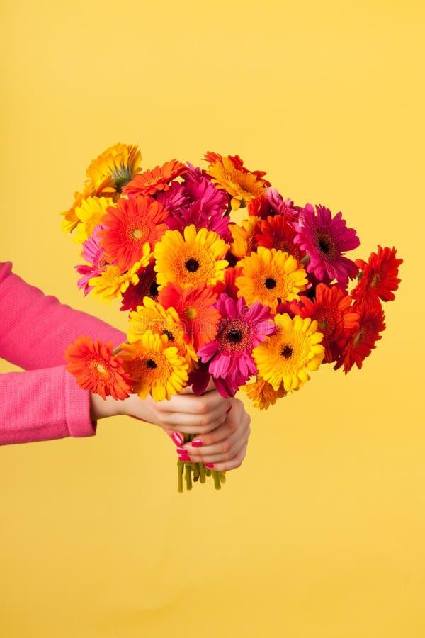 Blumenstrauß Gerber auf Gelb stockfotografie