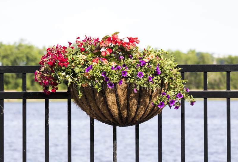 Blumenstrauß hängend am Zaun lizenzfreies stockfoto