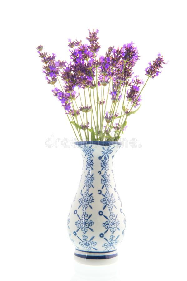 Blumenstrauß-Lavendel im Vase auf weißem Hintergrund lizenzfreie stockfotos