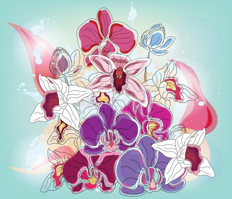 Blumenstrauß mit Orchideen lizenzfreie abbildung