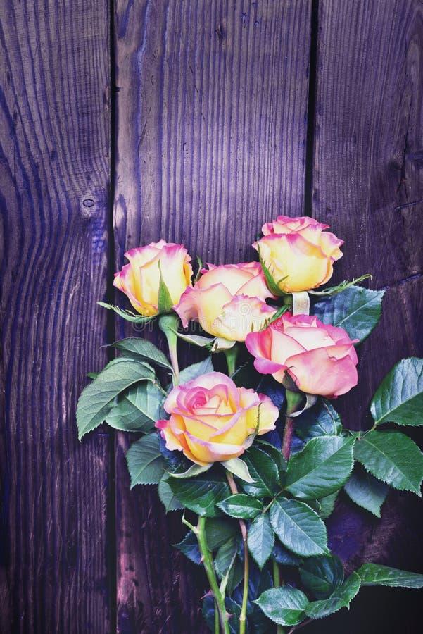 Blumenstrauß von blühenden Rosen stockbilder