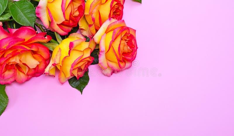 Blumenstrauß von blühenden Rosen des Gelbs lizenzfreie stockfotografie