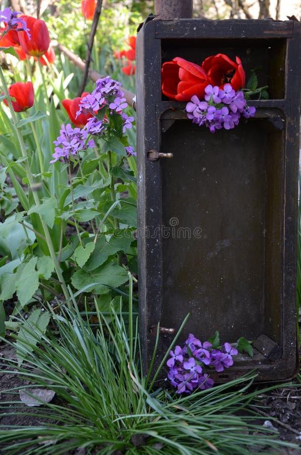 Blumenstrauß von Blumen, von roten Tulpen und von Flieder im gealterten Kasten Grüner Blütengarten und alter rustikaler Kasten Lä stockbild