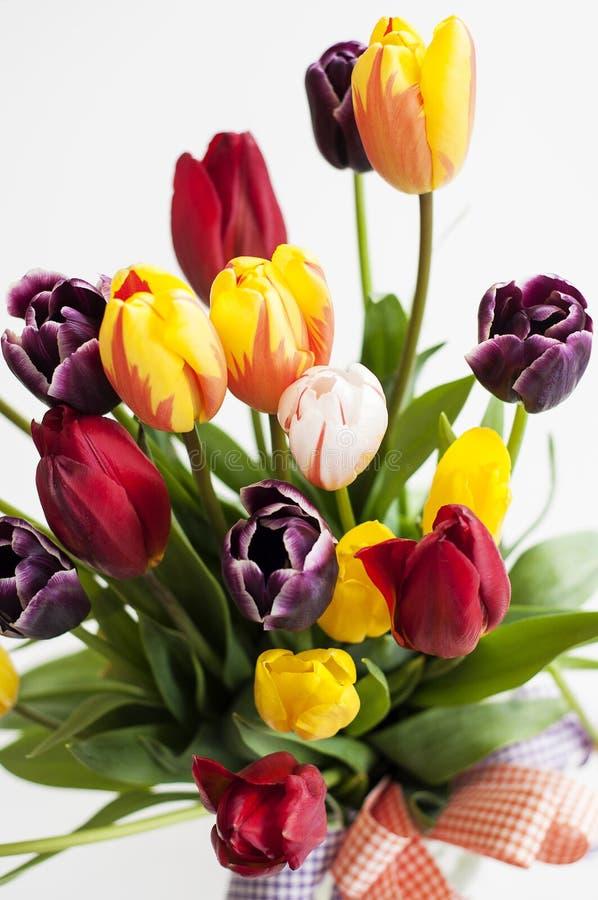 Blumenstrauß von bunten Frühlingstulpen lizenzfreie stockfotos