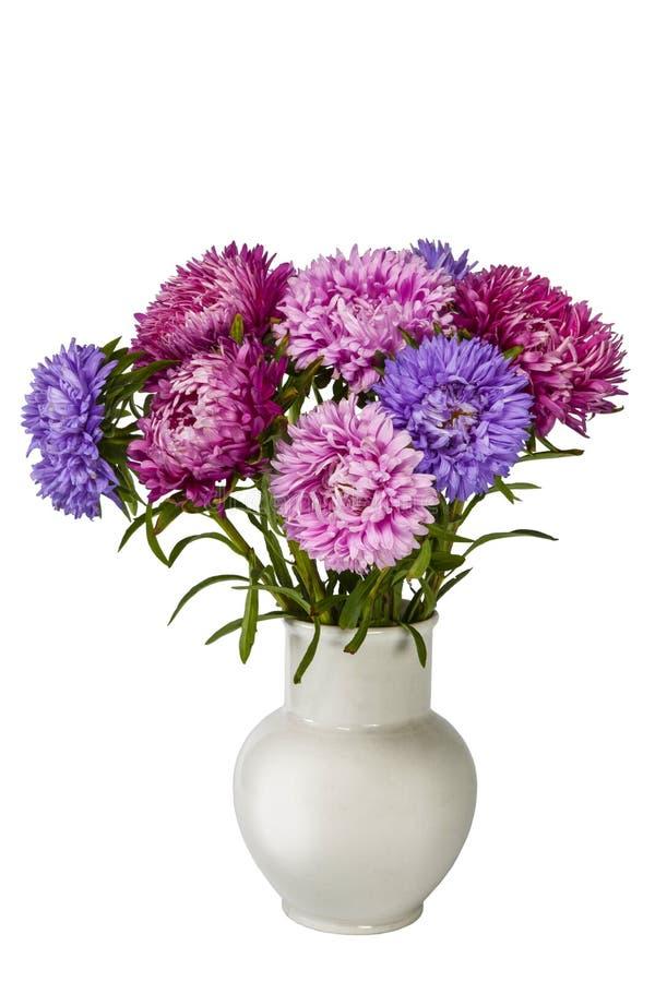 Blumenstrauß von bunten hellen Astern im weißen keramischen Vase auf weißem Hintergrund stockbilder
