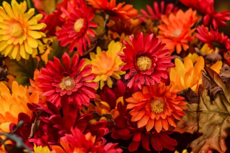 Blumenstrauß von Fall-Farben lizenzfreies stockbild