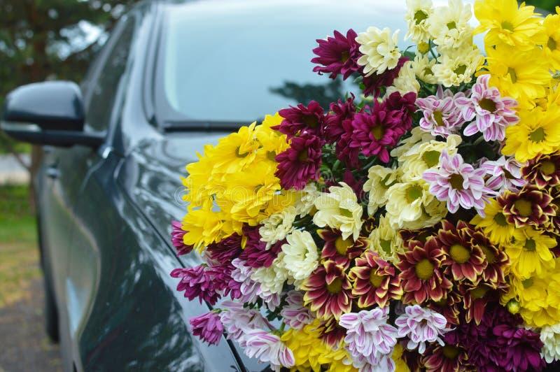 Blumenstrauß von Farbchrysanthemen auf dem schwarzen Auto lizenzfreies stockbild
