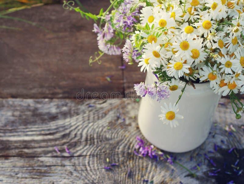 Blumenstrauß von Feld camomiles in einem weißen Krug lizenzfreies stockbild