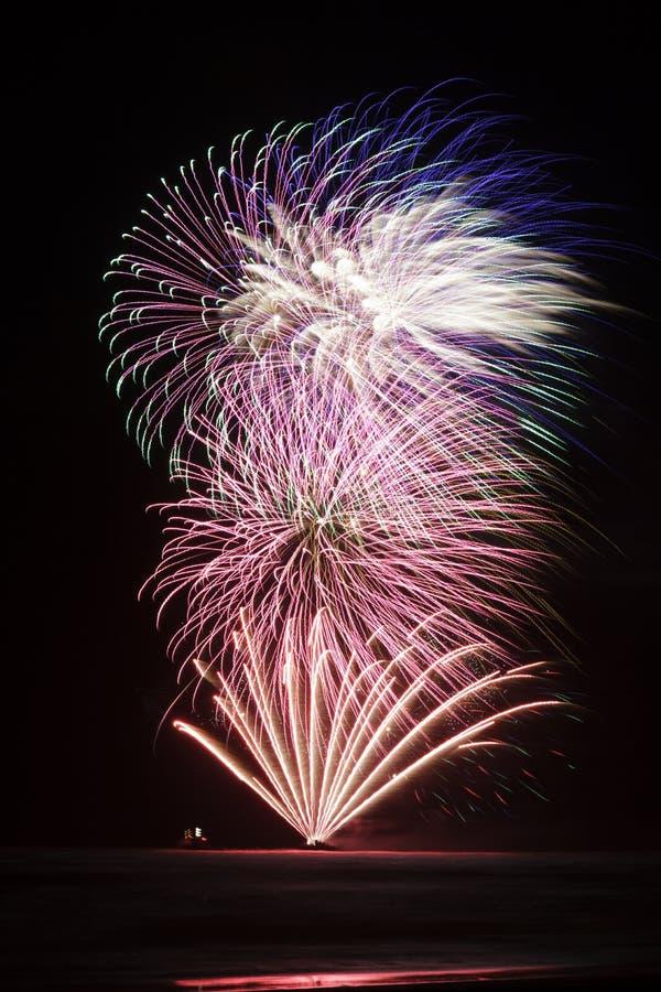 Blumenstrauß von Feuerwerken stockfotos