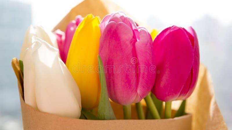 Blumenstrauß von frischen Frühlingstulpen stockfotos