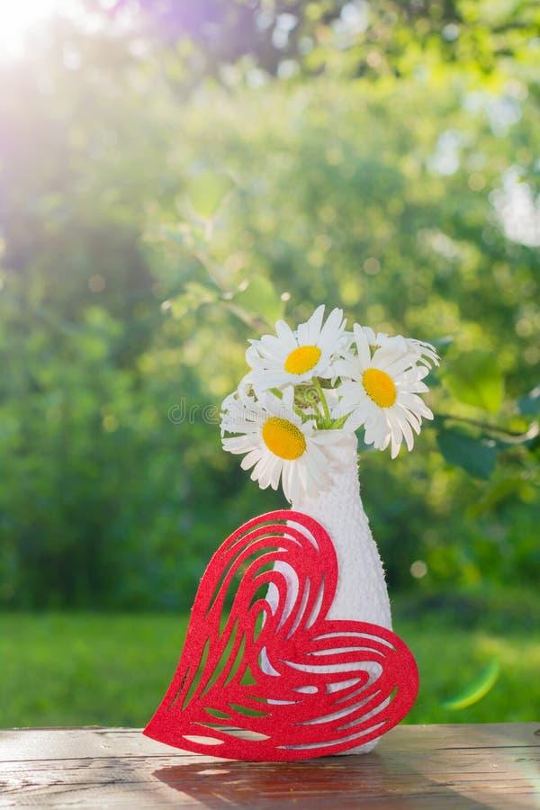 Blumenstrauß von Gänseblümchen in einem weißen Vase verziert, durch das Stricken und in einem roten dargestellten, Herzen auf ein lizenzfreie stockbilder