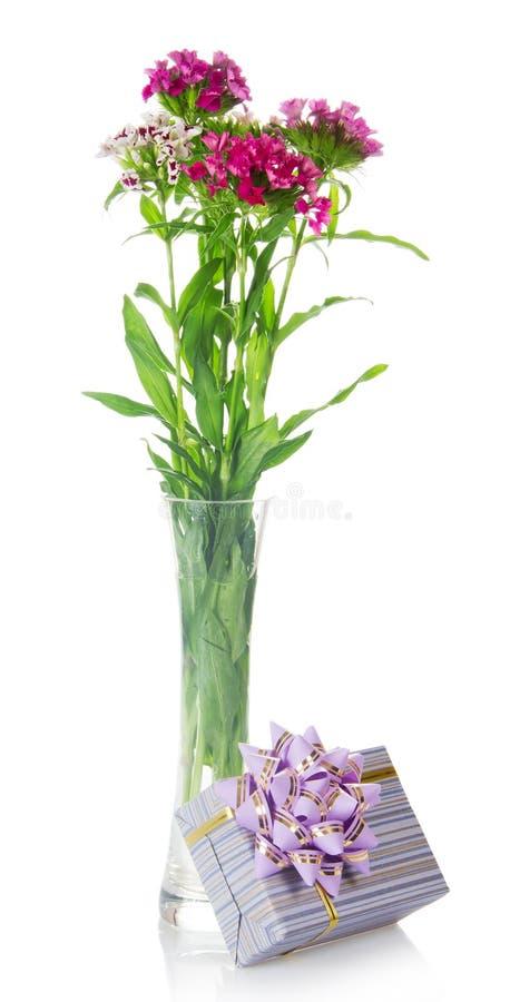 Blumenstrauß von Gartennelken und von Geschenkbox mit einem Bogen stockbilder
