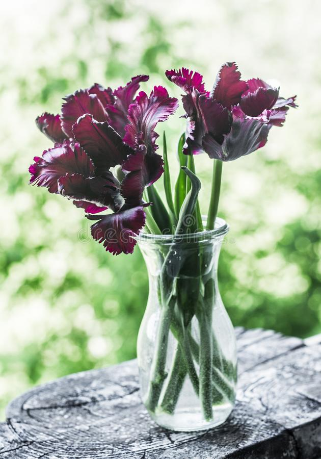 Blumenstrauß von purpurroten Terry-Tulpen in einer einfachen Flasche - Stilllebenschönheitsnatur Wenig Tabelle verziert mit Kerze lizenzfreie stockfotografie
