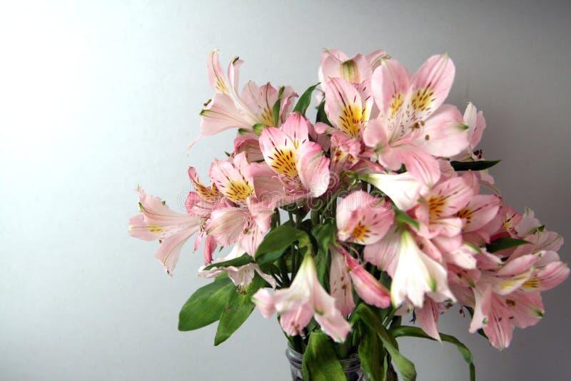 Blumenstrauß von rosa Alstroemeriablumen stockbilder