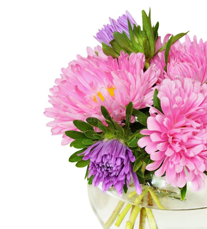 Blumenstrauß von rosa Astern stockfotografie