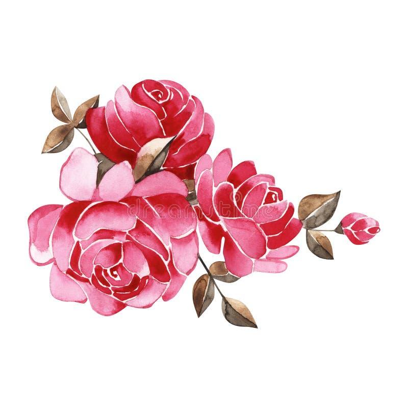 Blumenstrauß von Rosen, Aquarell, kann als Grußkarte, Einladungskarte für die Heirat benutzt werden, Geburtstag und anderer Feier lizenzfreie abbildung