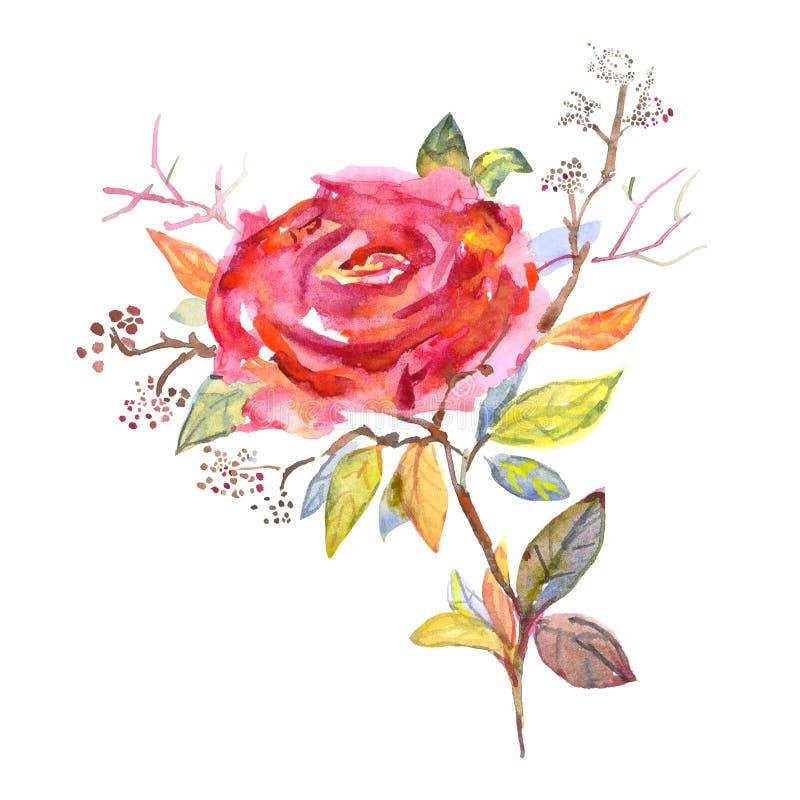 Blumenstrauß von Rosen, Aquarell, kann als Grußkarte, Einladungskarte für die Heirat benutzt werden, Geburtstag und anderer Feier vektor abbildung