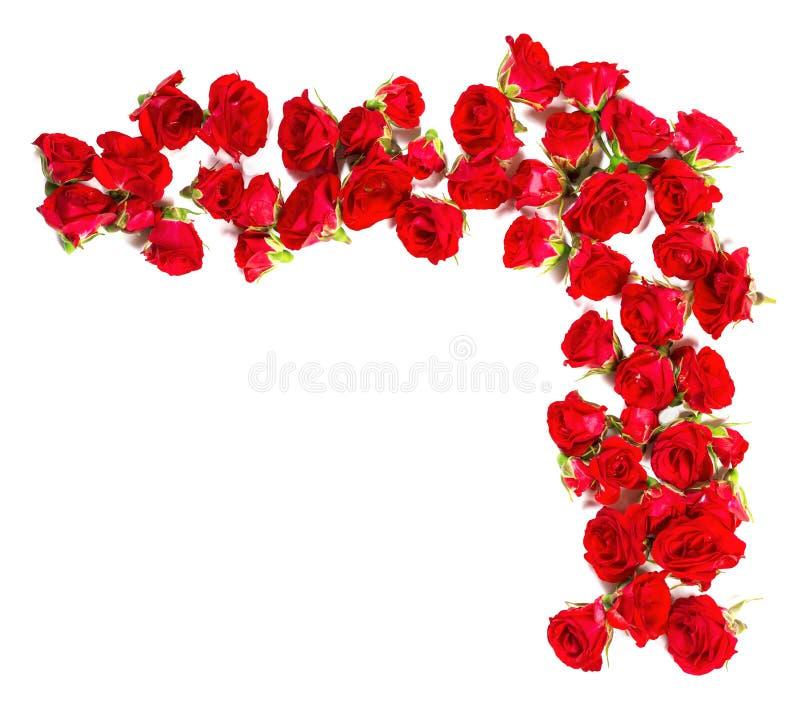 Blumenstrauß von Rosen vereinbarte zur Form einer Grenze oder des Gestaltungselements für Blumenthemen lizenzfreies stockfoto
