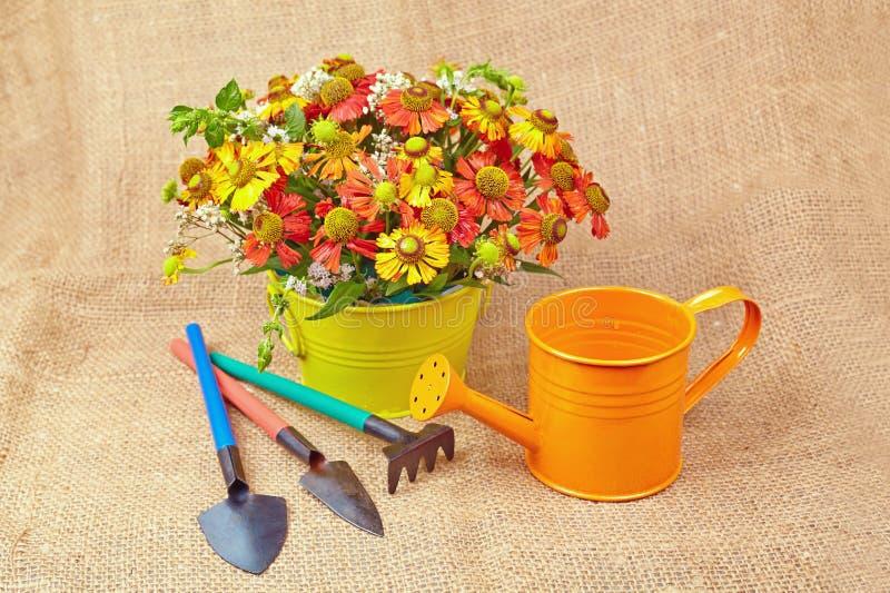 Blumenstrauß von roten Blumen (Helenium), von Gartenwerkzeugen und von Gießkanne lizenzfreies stockfoto