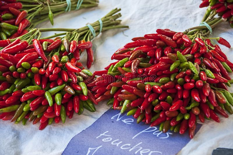 Blumenstrauß von roten kleinen Pfeffern stockbilder